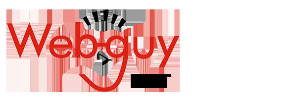 Webguy Domain Store
